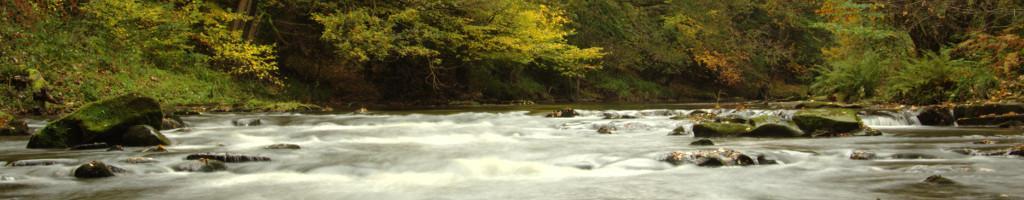 River Derwent, Nov 2013