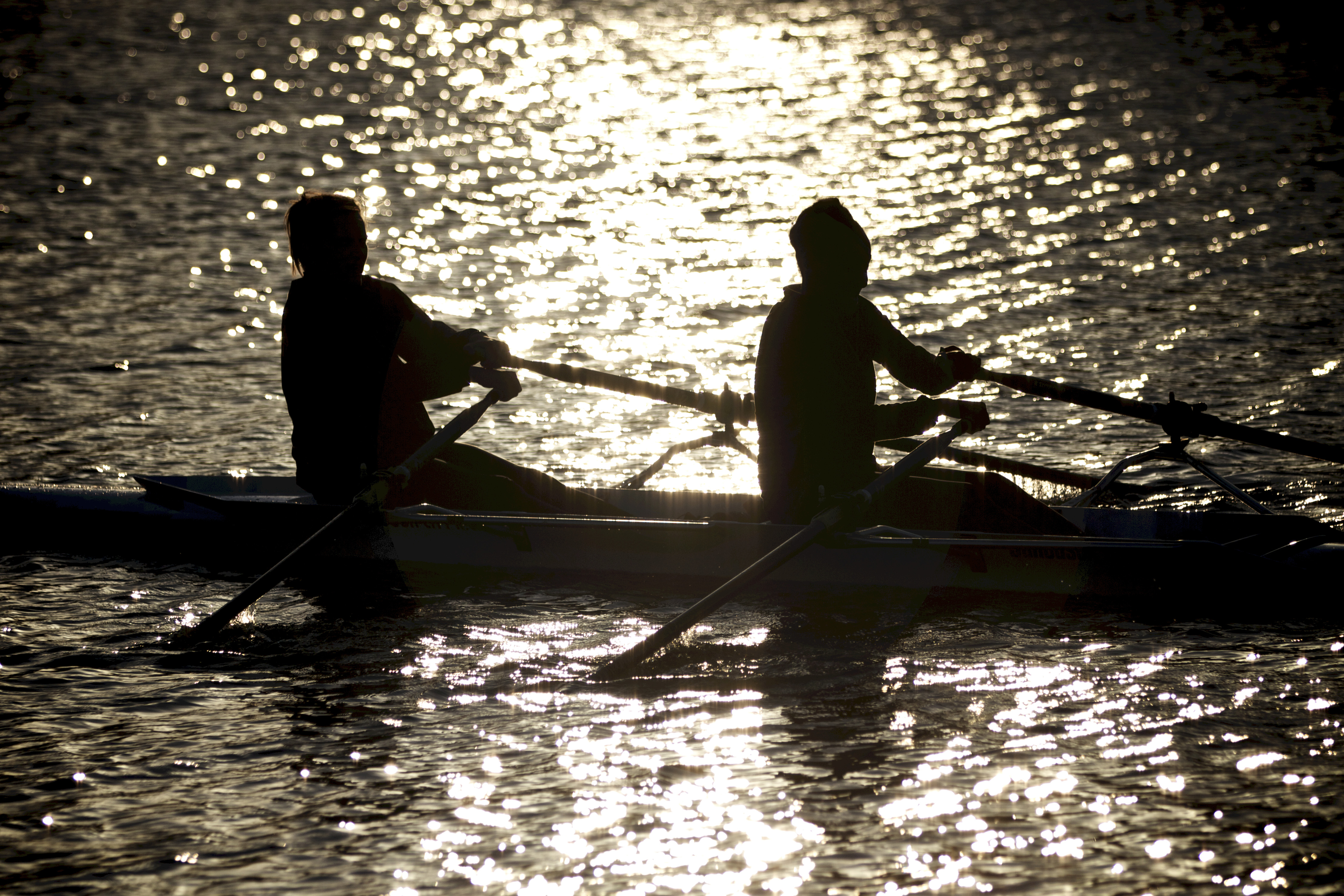 Rowers Silhouette