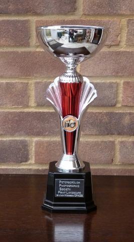 Judy Hodgson Cup